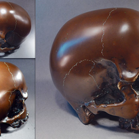 Skull by Cliff Vincenzi : Sculptor