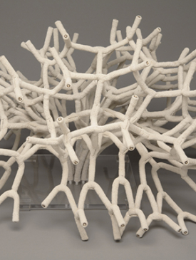 Habitat by Diane Roy, Sculptor