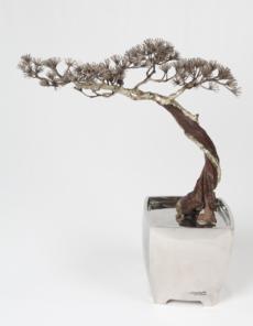Bonsai No.6 by Guo Zilong, Sculptor